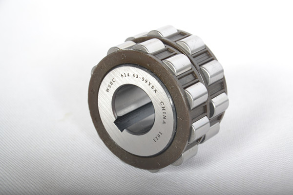 Explain The Composition as well as Setup of The Unusual Bearings